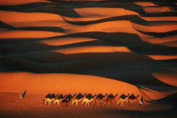 Mauritania Islamists