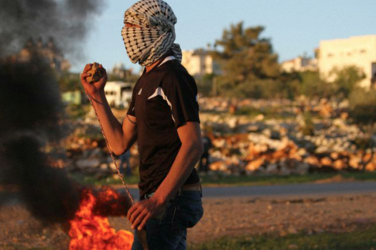 Gaza conflict essay